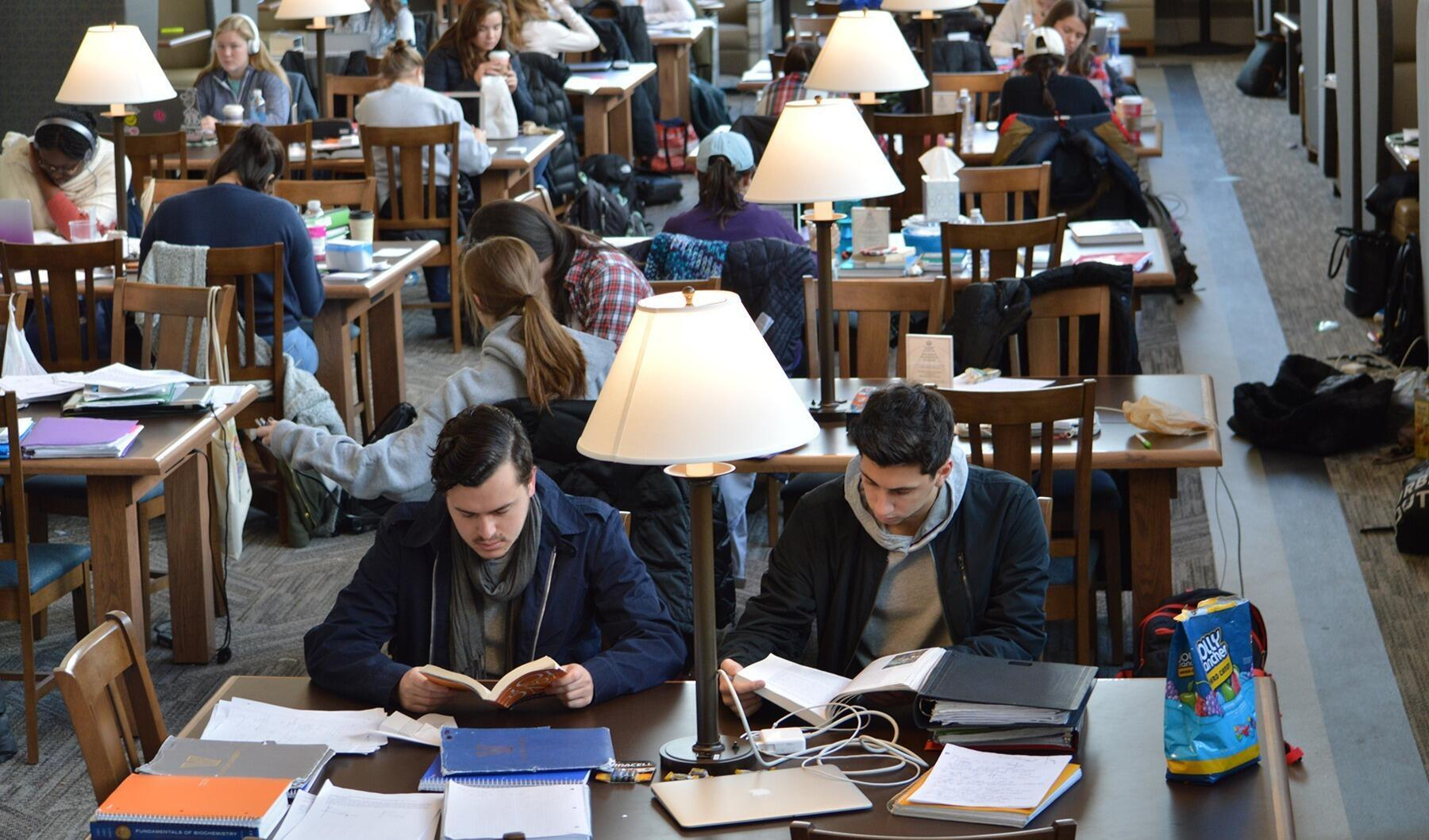 Students studying at desks in the Reading Room